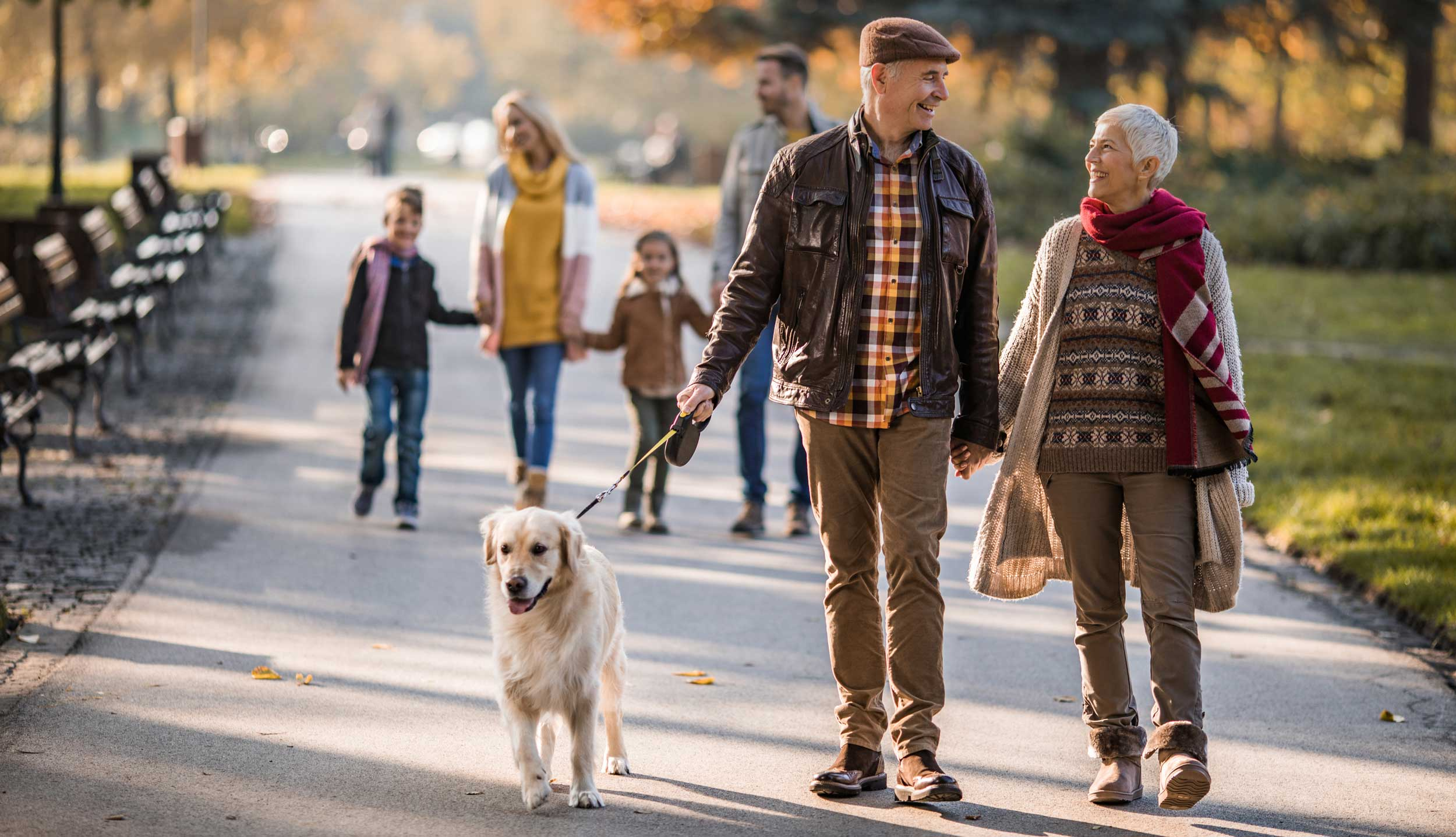 Couple walks with a dog on a paved, wooded path.
